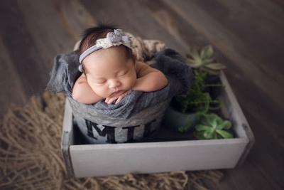 Stephanie Butcher Newborn Photography